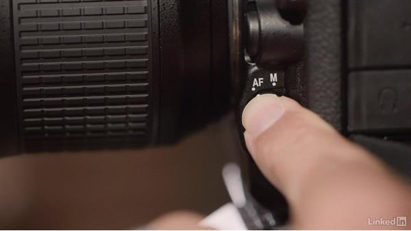 Welcome: Nikon D500: Tips and Techniques