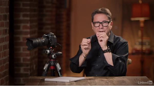 Using dynamic autofocus points: Nikon D500: Tips and Techniques
