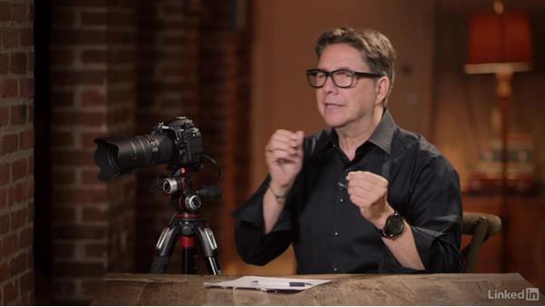 Understanding more advanced autofocus features: Nikon D500: Tips and Techniques