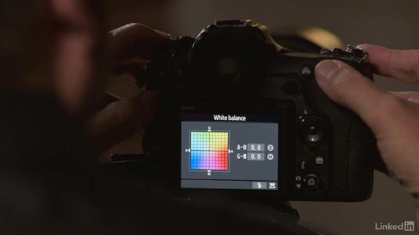 Next steps: Nikon D500: Tips and Techniques