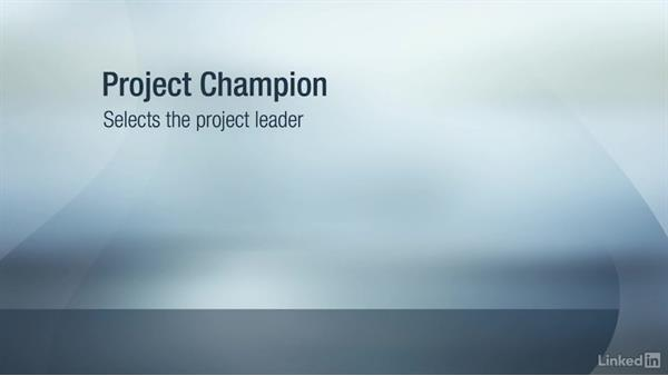 Key roles of executives and champions: Six Sigma Fundamentals