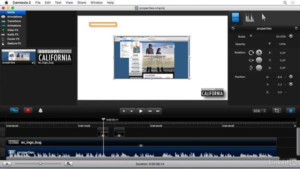 Setting visual properties: Camtasia 2 for Mac Essential Training