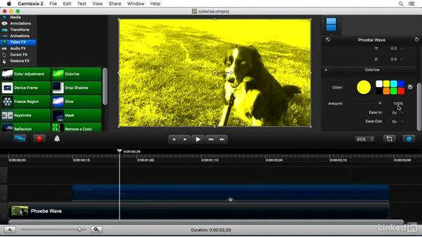 Using the Colorize FX: Camtasia 2 for Mac Essential Training