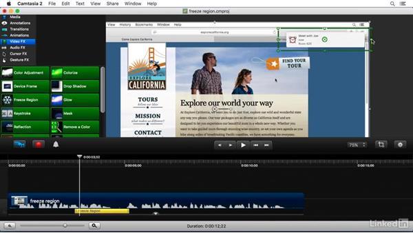 Using the Freeze Region FX: Camtasia 2 for Mac Essential Training
