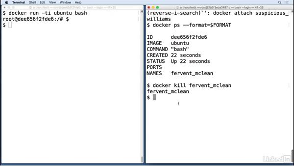 Manage containers: Docker: The Basics