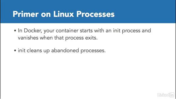 Processes and cgroups: Docker: The Basics