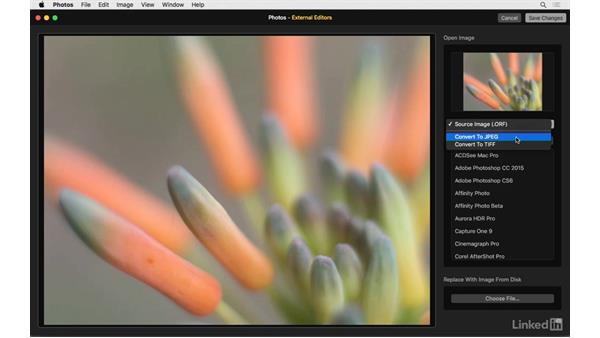 Overview of External Editors: Photos for OS X: Extensions for Local Adjustments