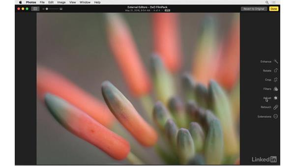 Next steps: Photos for OS X: Extensions for Local Adjustments