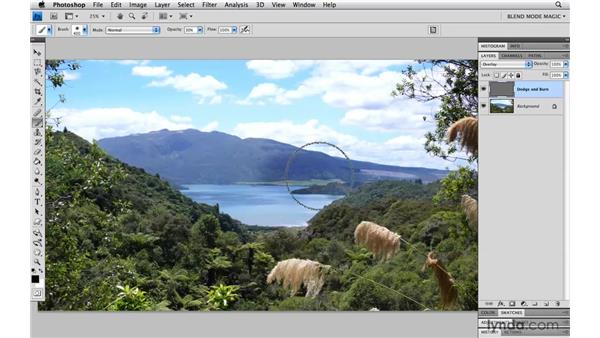 Using Dodge and Burn with Overlay: Photoshop Blend Mode Magic