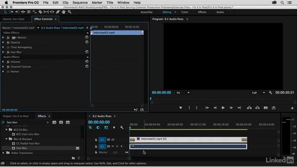 Witness protection audio treatment: Premiere Pro Guru: Fix It in Post