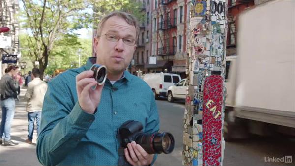 Macro shots using an extension tube: Photo Gear Weekly