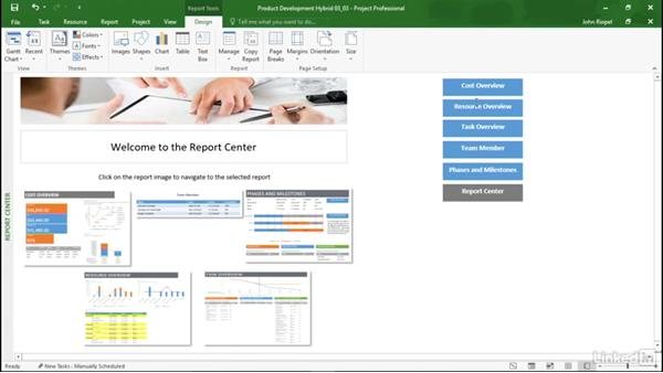 Project scenario: Mastering Microsoft Project Graphical Reports