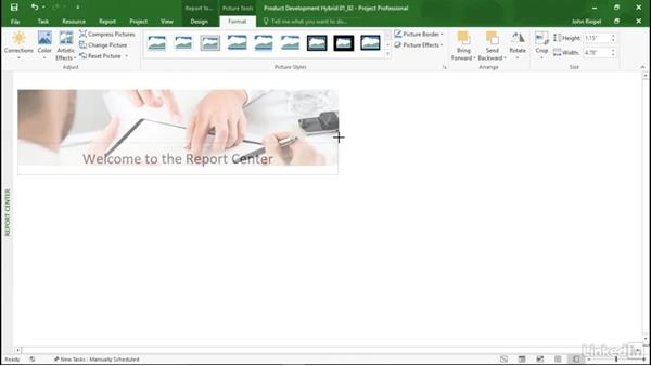 Working with Report objects: Mastering Microsoft Project Graphical Reports