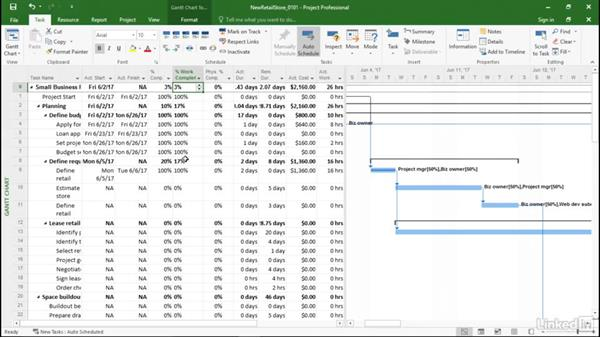 Fields for updating progress: Managing Actual Values in Microsoft Project