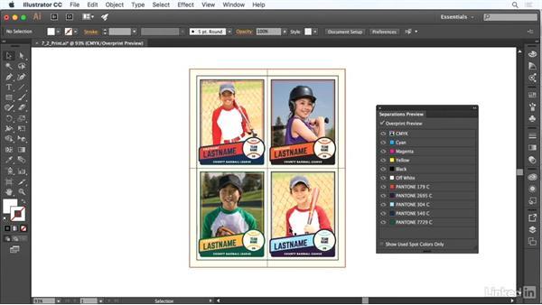 Prepare graphics for print: Adobe Certified Associate Prep: Illustrator