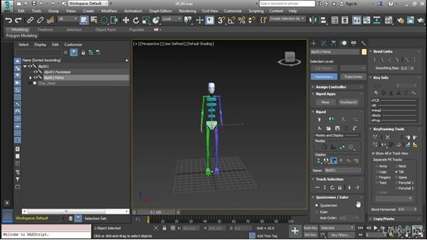 Create simple bipeds: Cert Prep: 3ds Max Certified Professional