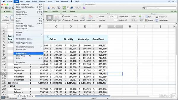 Printing headers at the top of each printed page: Excel for Mac 2011: Pivot Tables in Depth