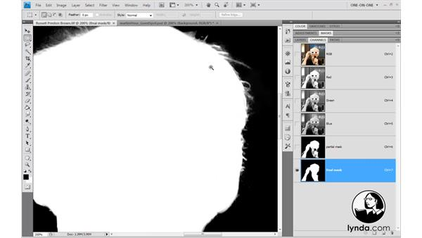 Welcome: Photoshop CS4 One-on-One: Mastery