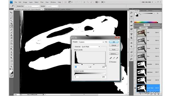 Viewing a quick mask by itself: Photoshop CS4 One-on-One: Mastery