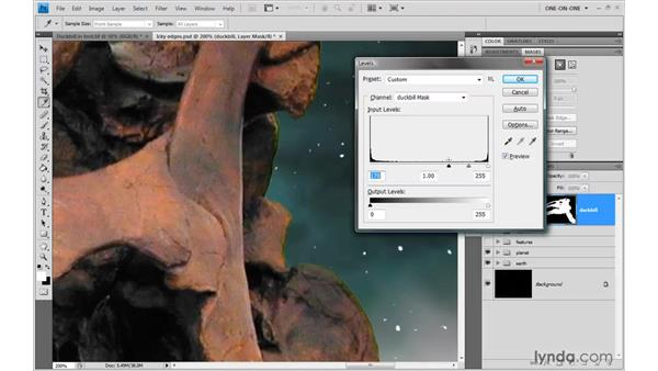 Choking a mask with Gaussian Blur and Levels: Photoshop CS4 One-on-One: Mastery