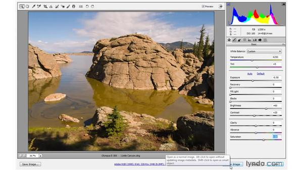 Creating a Camera Raw Smart Object: Photoshop CS4 One-on-One: Mastery