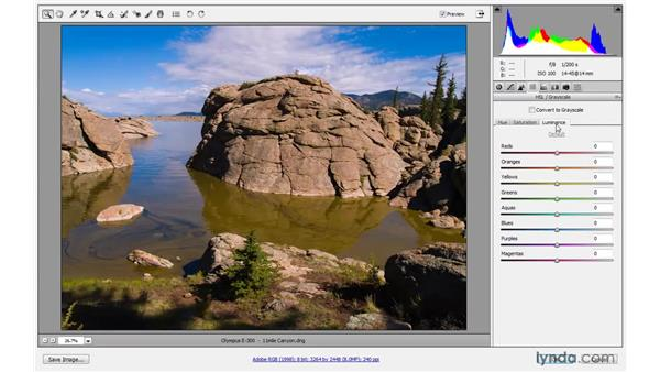 Editing a Camera Raw Smart Object: Photoshop CS4 One-on-One: Mastery