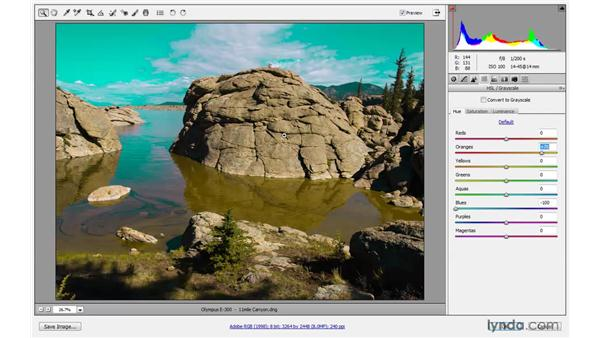 Using an ACR Smart Object to effect: Photoshop CS4 One-on-One: Mastery
