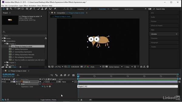 Things to keep in mind when adding expressions: After Effects Guru: Expressions
