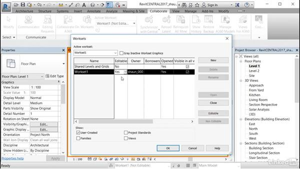 Using worksharing visualization: Cert Prep: Revit Architecture Certified Professional