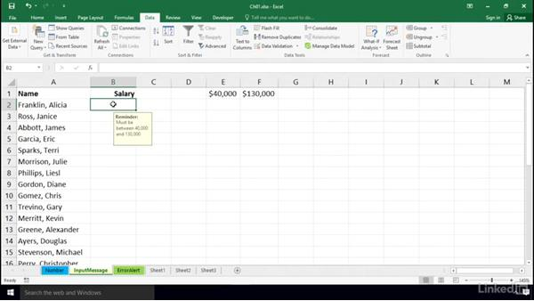 Using the Input Message box: Excel 2016: Data Validation in Depth