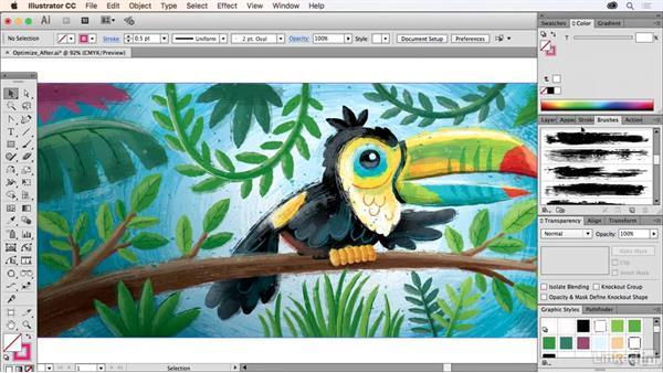 Creating optimized final art files: Drawing Vector Graphics Laboratory