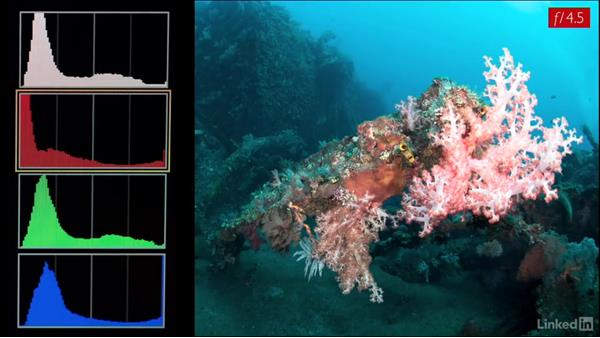 Aperture and the RGB channels: Underwater Photography: Wide Angle