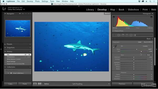White balance and color in an underwater photo: Underwater Photography: Wide Angle