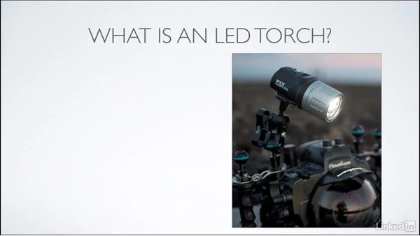 Strobes vs. LED torches: Learning Underwater Photography