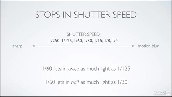 Shutter speed: Learning Underwater Photography