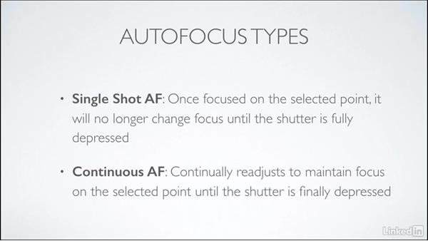 Autofocus types: Learning Underwater Photography