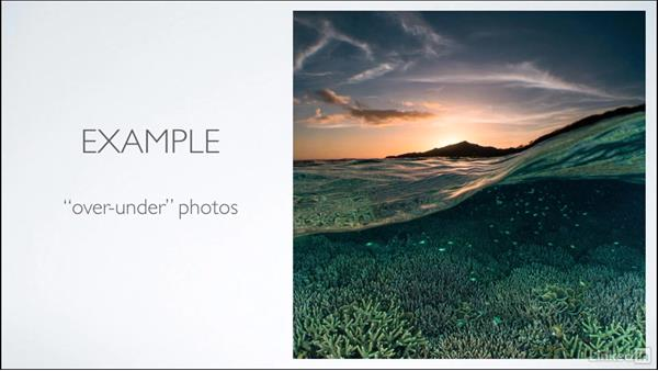 Momentary auto and manual focus: Learning Underwater Photography