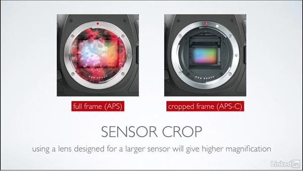 Sensor crop