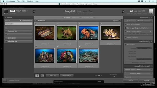 Setup and import: Learning Underwater Photography