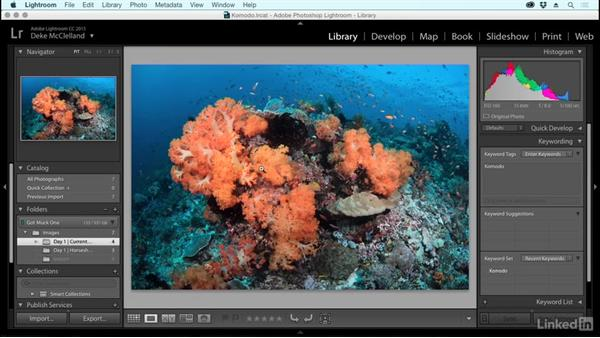 Organization and rating: Learning Underwater Photography
