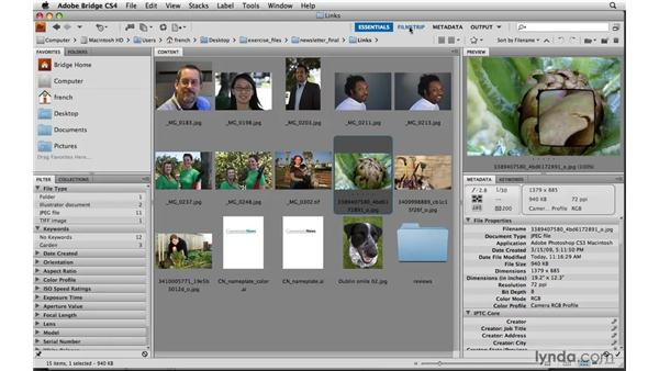 Choosing images: Designing a Newsletter