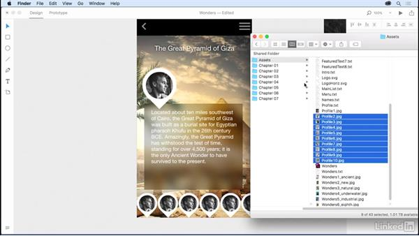 Using Repeat Grid for profiles: Design a Mobile App with Adobe XD