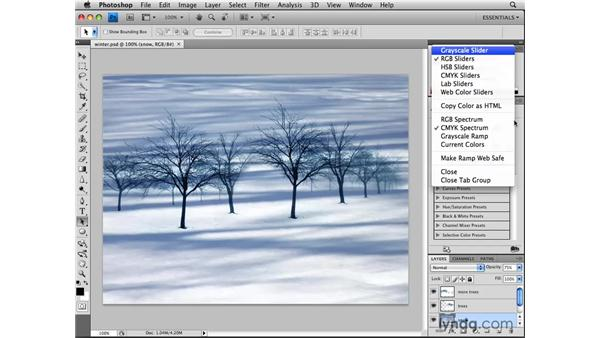 Setting up a workspace: Photoshop CS4: Image Adjustments in Depth