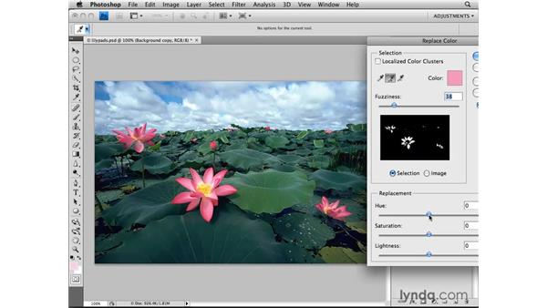 Using the Replace Color adjustment: Photoshop CS4: Image Adjustments in Depth