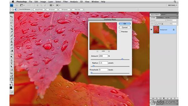 Previewing, resetting, canceling, and applying: Photoshop CS4 Power Shortcuts