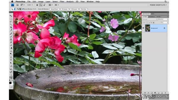 Open GL navigation: Photoshop CS4 Power Shortcuts