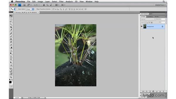 Saving custom workspaces: Photoshop CS4 Power Shortcuts