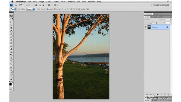 Changing the Tools panel: Photoshop CS4 Power Shortcuts