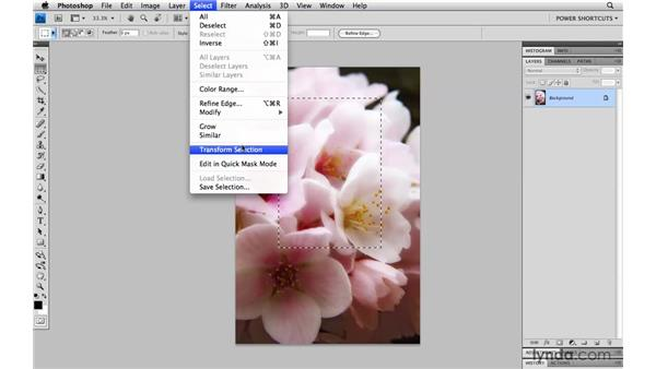 Transforming selections: Photoshop CS4 Power Shortcuts
