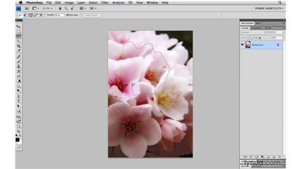 The lasso tools: Photoshop CS4 Power Shortcuts